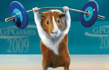 GUINEA-PIG-WEIGHT-L_786613i.jpg